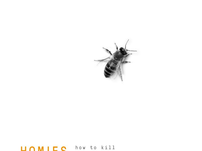"Homies, ""How to Kill Your Comfort Hive"" fuori l'EP di debutto"